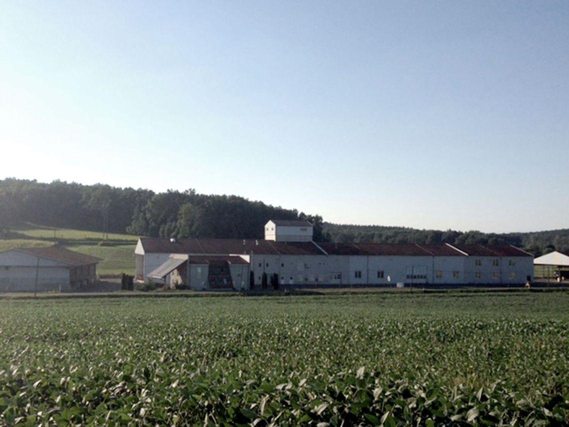 Heutiger Betrieb des Agrarhandel Kollar-Lackner
