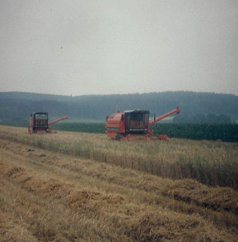 Drescharbeiten im Betrieb Kollar-Lackner